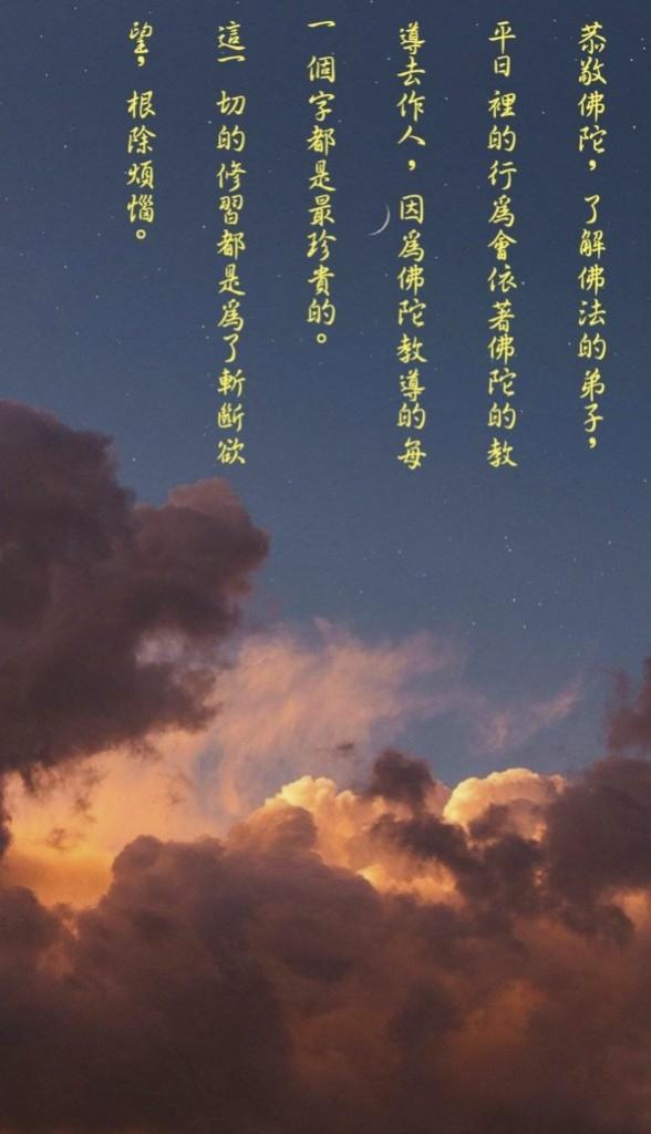阿姜舒净语录 (53)