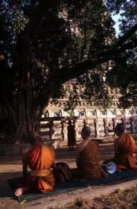 Pilgrimage in India