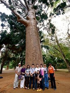 ณ กาลครั้งหนึ่ง ที่ ศรีลังกา ตอนที่ ๔ สวนพฤกษ์ศาสตร์ เพลาดินียา-เมืองนูวาราเอลิย่า